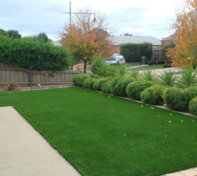 Always Greener, No Watering, No Mowing!