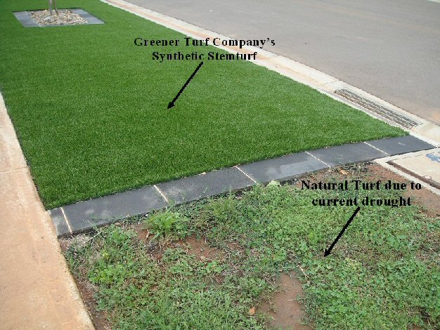 With and Without Stemturf.